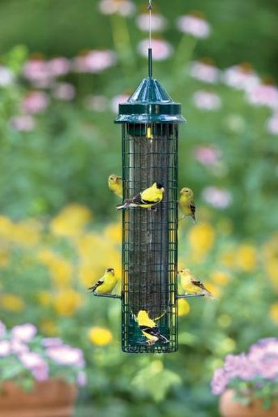 BROME Squirrel Buster Finch Feeder