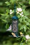 BROME Squirrel Buster Mini 3/4 Qt. Feeder
