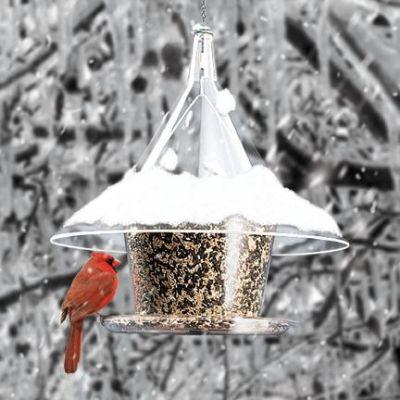 Mandarin Sky Café Bird Feeder