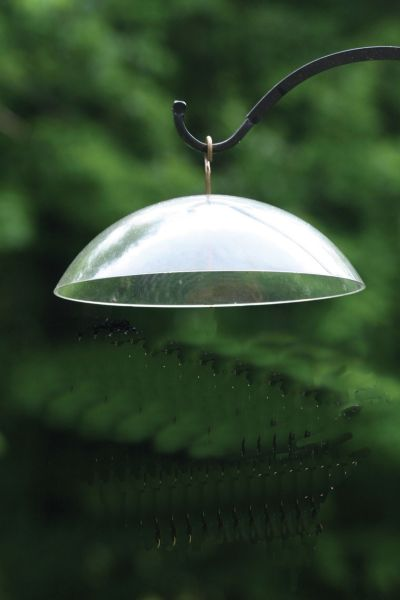 Clear Dome w/Brass Hanger & Hook | Birds Choice