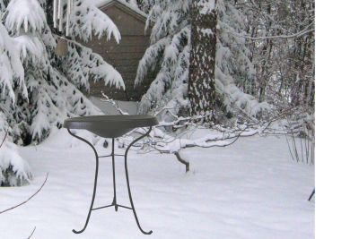 Heated Bird Bath-Pedestal-Black | Birds Choice #HPED-BL