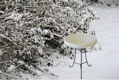 Heated Bird Bath-Pedestal-White ? Birds Choice #HPED-WH