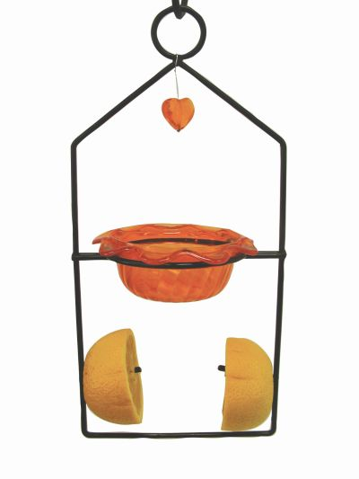 Oriole Dual Bird Feeder | Birds Choice #ODF