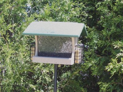 Lg. Hopper Feeder, w/ 2 Suet Cages, Seed Catcher, Pole System w/ Squirrel Baffle #8 Combo