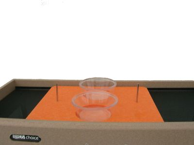 Jelly/Fruit Open Platform Feeder Tray | Birds Choice #SNOT