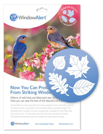 WindowAlert Leaf Medley  Decals