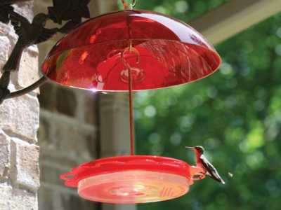 Hummerfest Hummingbird Feeder-12 oz. with Red Dome by Birds Choice