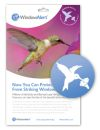 WindowAlert Hummingbird Decals (Pack of 4)