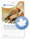 WindowAlert Maple Leaf Decals (Pack of 4)