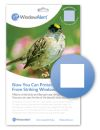 WindowAlert Square Decals (Pack of 4)