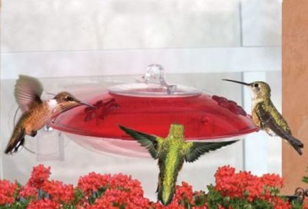 Little Flyer 4 Window-Mount  Hummingbird Feeder